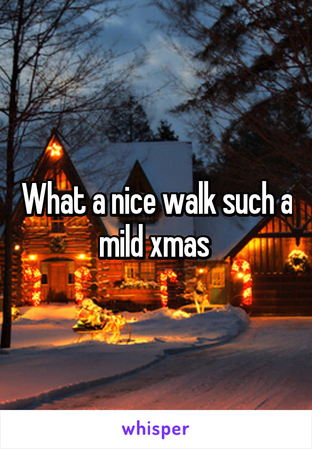 What a nice walk such a mild xmas