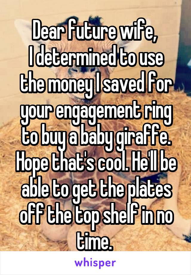 Dear future wife,  I determined to use the money I saved for your engagement ring to buy a baby giraffe. Hope that's cool. He'll be able to get the plates off the top shelf in no time.