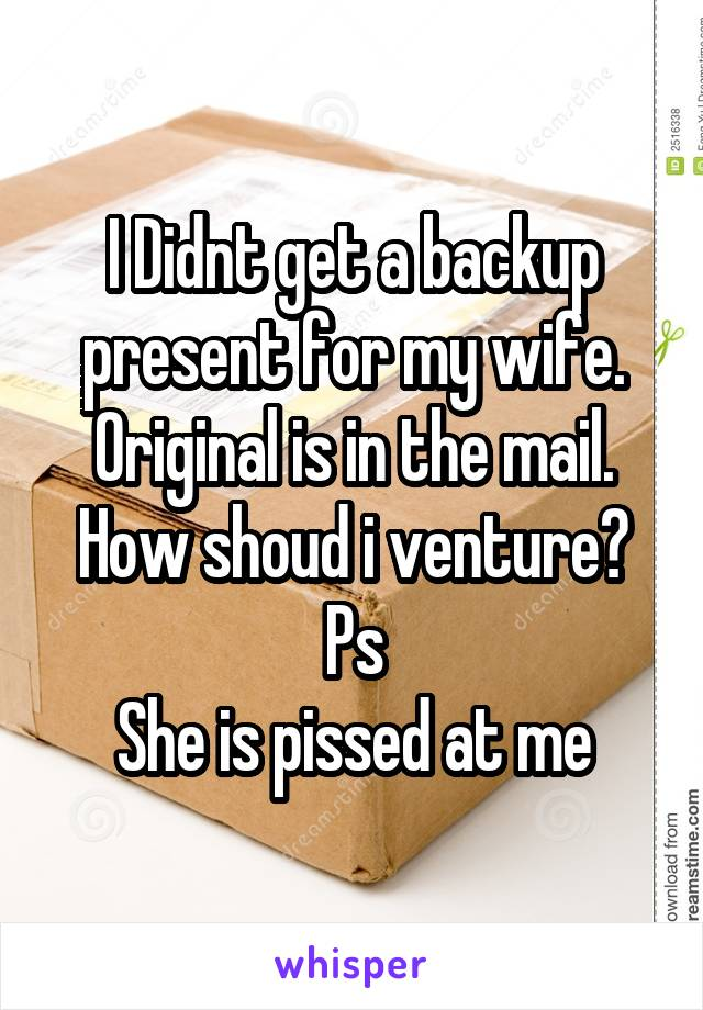 I Didnt get a backup present for my wife. Original is in the mail. How shoud i venture? Ps She is pissed at me