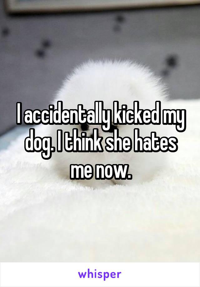 I accidentally kicked my dog. I think she hates me now.