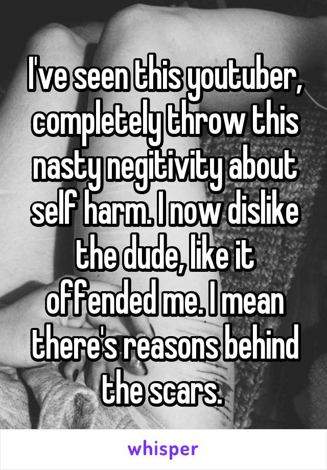 I've seen this youtuber, completely throw this nasty negitivity about self harm. I now dislike the dude, like it offended me. I mean there's reasons behind the scars.