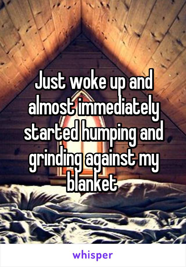 Just woke up and almost immediately started humping and grinding against my blanket