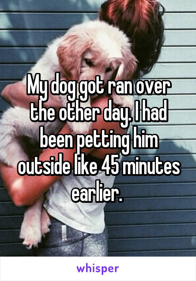 My dog got ran over the other day. I had been petting him outside like 45 minutes earlier.