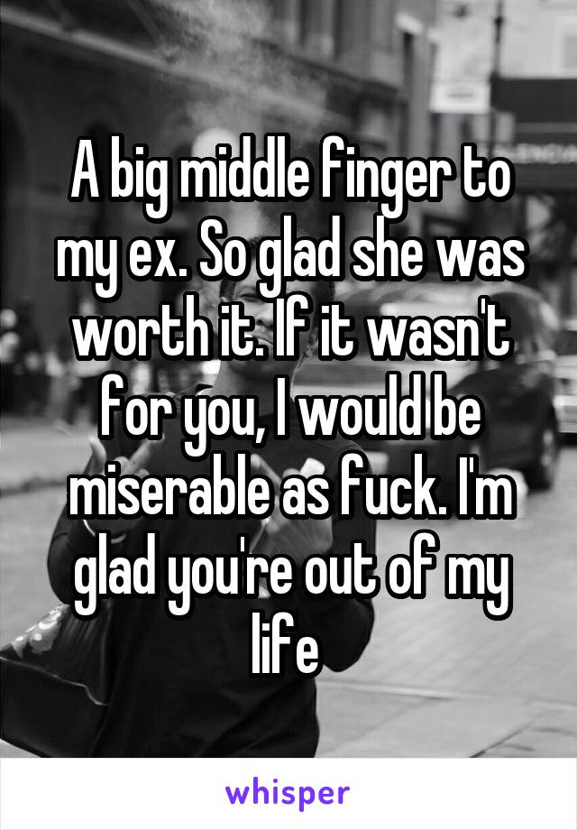 A big middle finger to my ex. So glad she was worth it. If it wasn't for you, I would be miserable as fuck. I'm glad you're out of my life