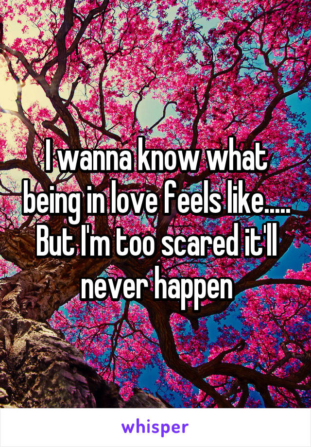 I wanna know what being in love feels like..... But I'm too scared it'll never happen