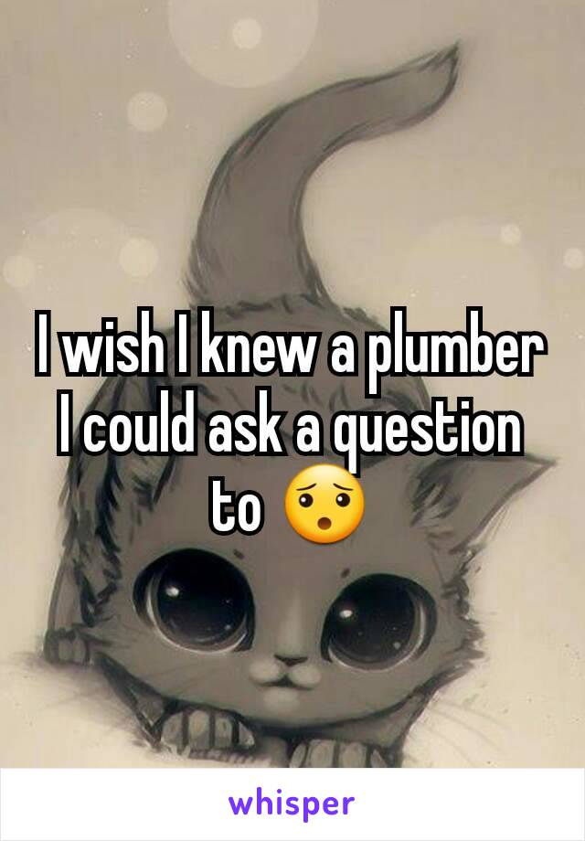 I wish I knew a plumber I could ask a question to 😯