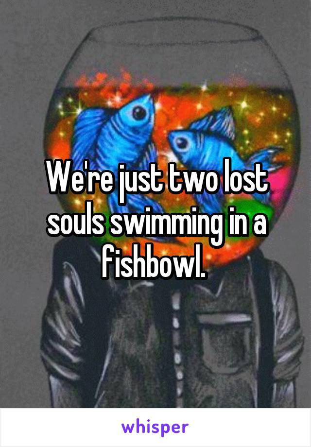 We're just two lost souls swimming in a fishbowl.