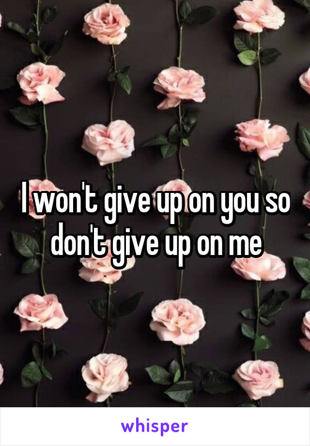 I won't give up on you so don't give up on me