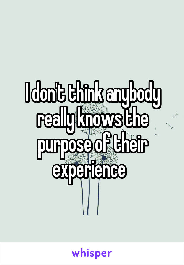I don't think anybody really knows the purpose of their experience