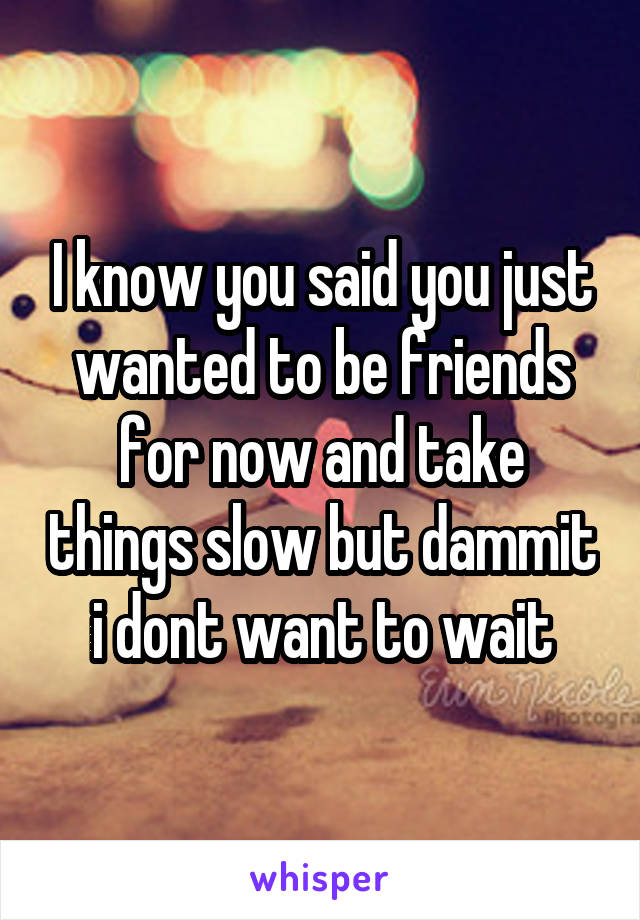 I know you said you just wanted to be friends for now and take things slow but dammit i dont want to wait