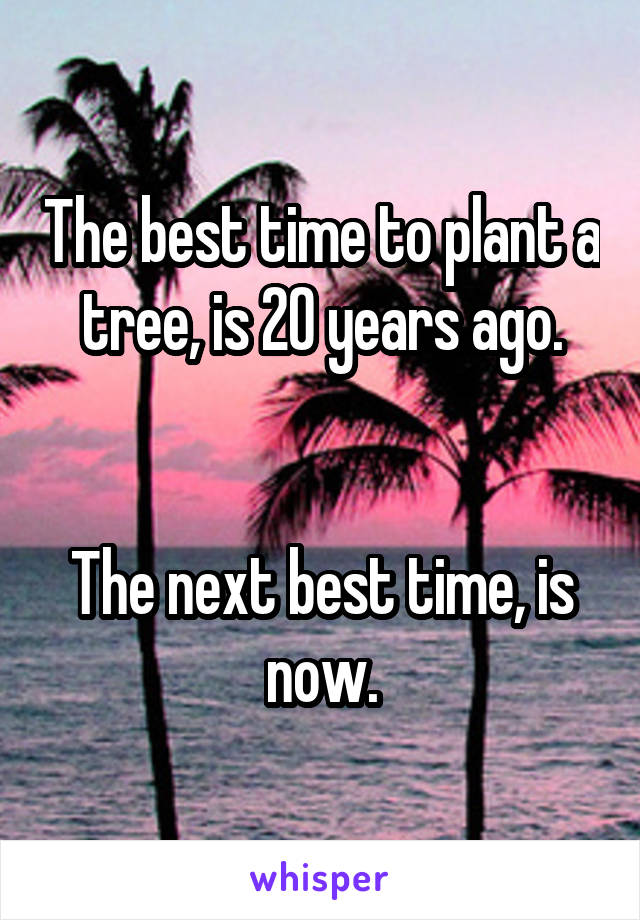 The best time to plant a tree, is 20 years ago.   The next best time, is now.