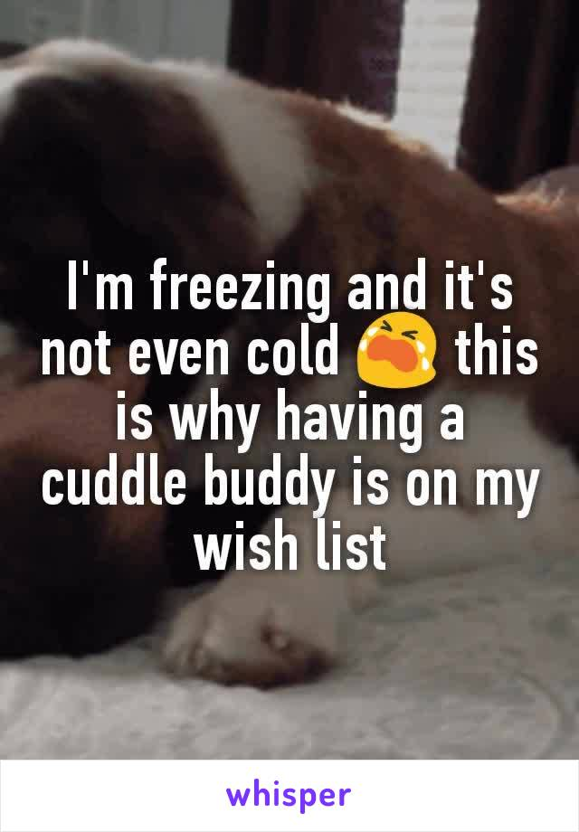 I'm freezing and it's not even cold 😭 this is why having a cuddle buddy is on my wish list