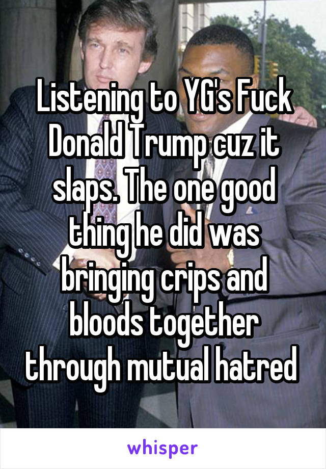 Listening to YG's Fuck Donald Trump cuz it slaps. The one good thing he did was bringing crips and bloods together through mutual hatred