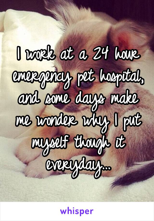 I work at a 24 hour emergency pet hospital, and some days make me wonder why I put myself though it everyday...