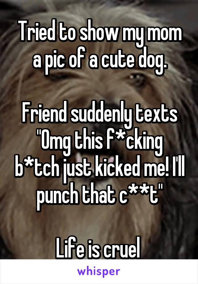 """Tried to show my mom a pic of a cute dog.  Friend suddenly texts """"Omg this f*cking b*tch just kicked me! I'll punch that c**t""""  Life is cruel"""