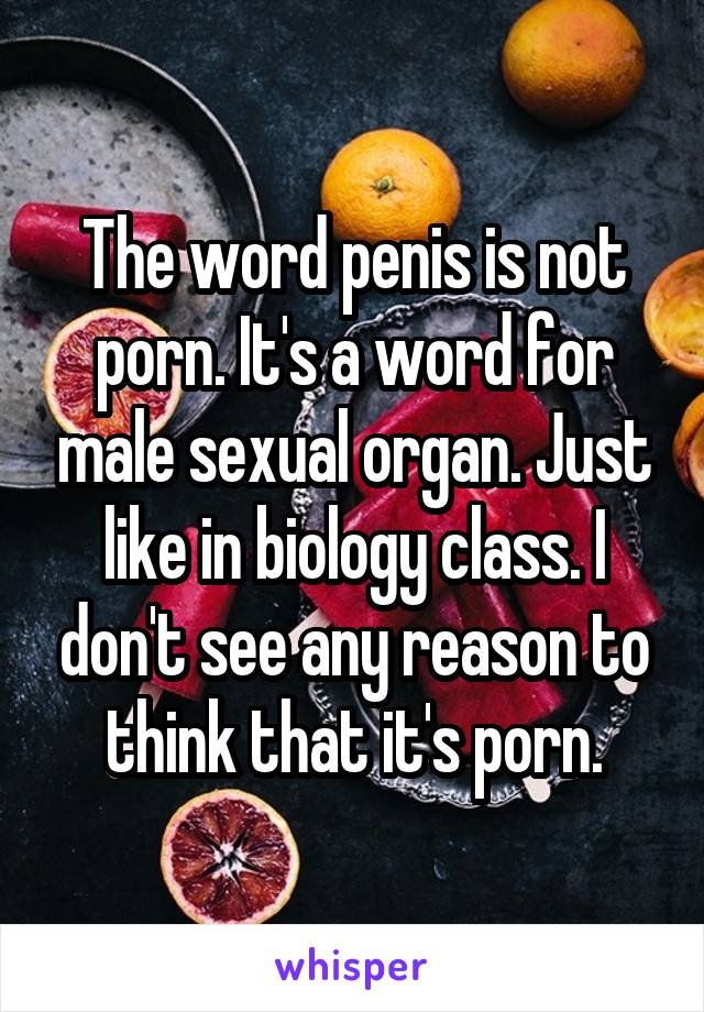 Porno male sex organ agree, your