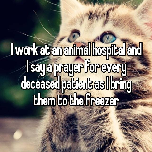 I work at an animal hospital and I say a prayer for every deceased patient as I bring them to the freezer