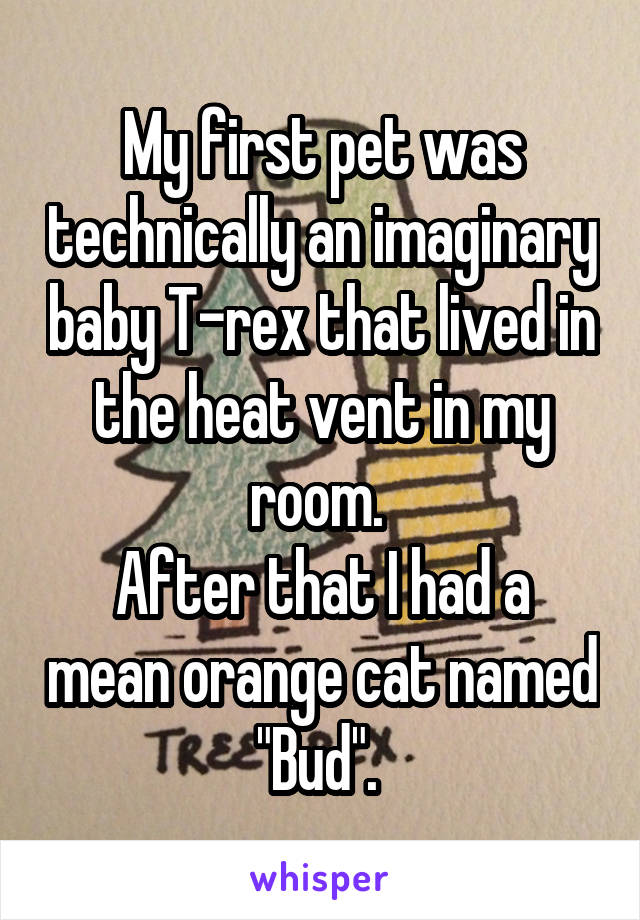 "My first pet was technically an imaginary baby T-rex that lived in the heat vent in my room.  After that I had a mean orange cat named ""Bud""."