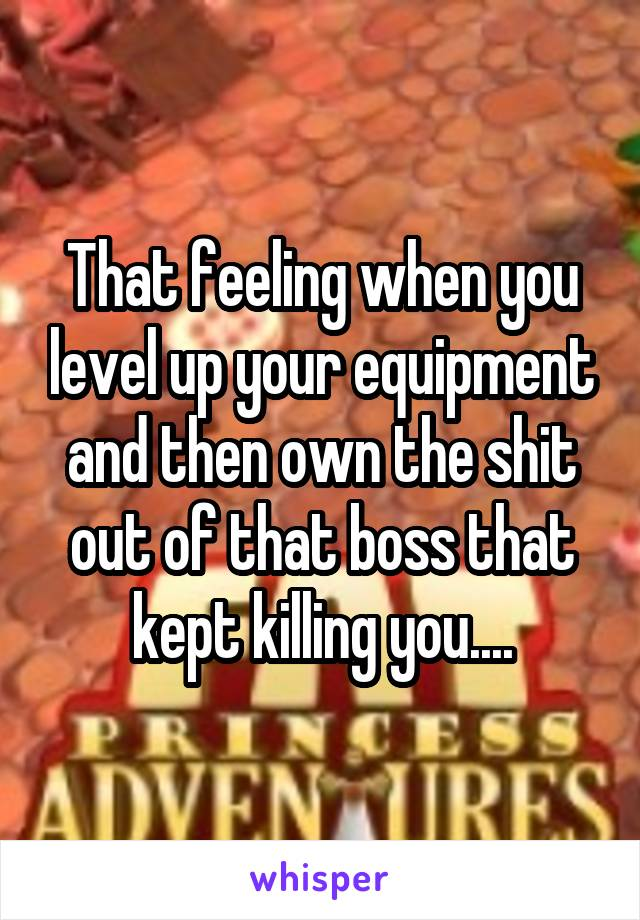 That feeling when you level up your equipment and then own the shit out of that boss that kept killing you....