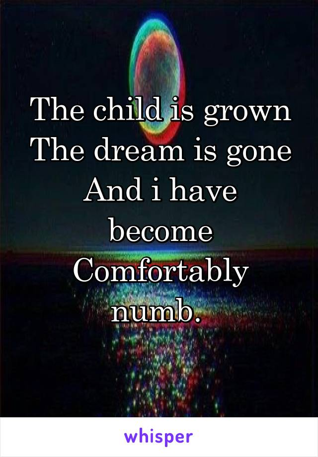 3b55b390 The child is grown The dream is gone And i have become Comfortably numb.
