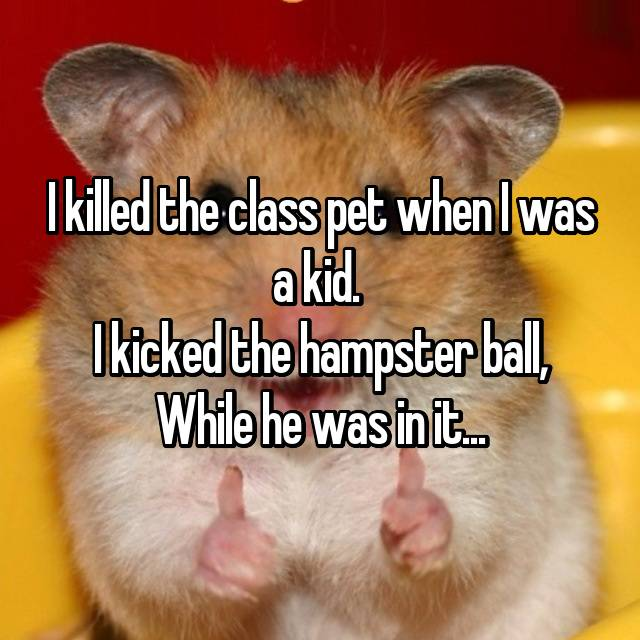 I killed the class pet when I was a kid.  I kicked the hampster ball, While he was in it...