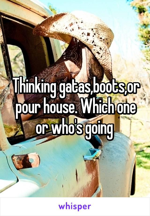 Thinking gatas,boots,or pour house. Which one or who's going