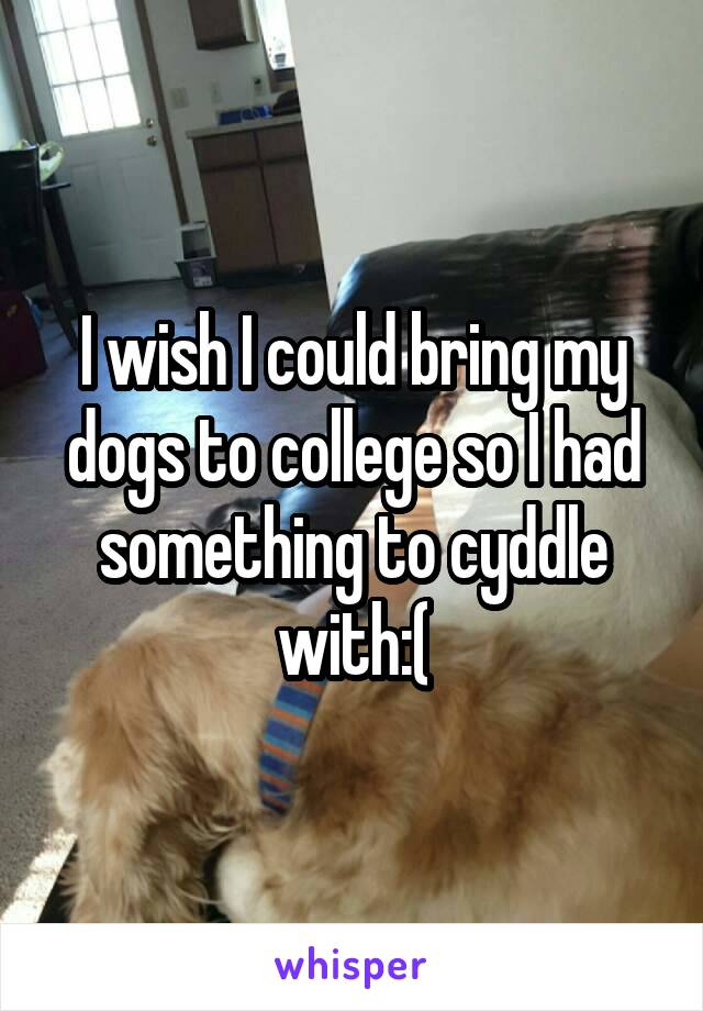 I wish I could bring my dogs to college so I had something to cyddle with:(