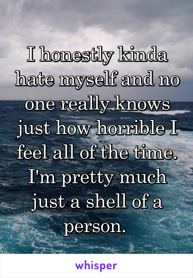 I honestly kinda hate myself and no one really knows just how horrible I feel all of the time. I'm pretty much just a shell of a person.