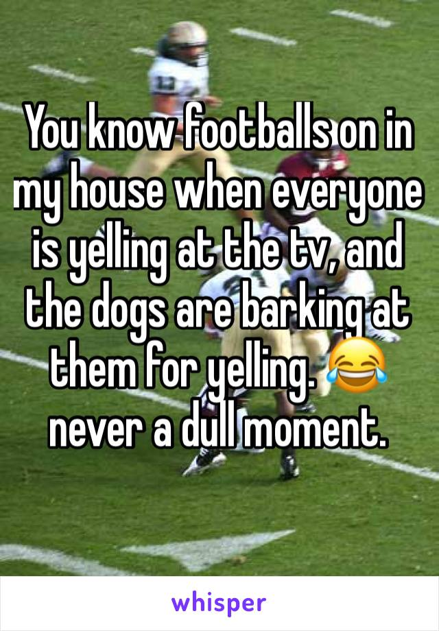 You know footballs on in my house when everyone is yelling at the tv, and the dogs are barking at them for yelling. 😂never a dull moment.
