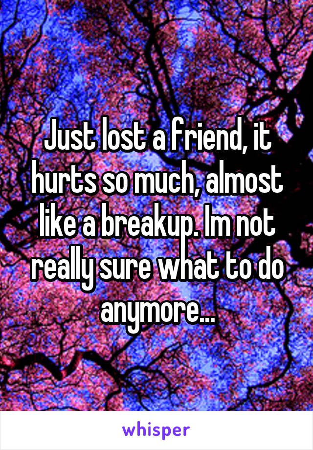 Just lost a friend, it hurts so much, almost like a breakup. Im not really sure what to do anymore...