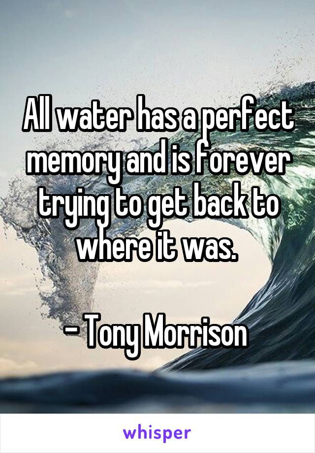 All water has a perfect memory and is forever trying to get back to where it was.   - Tony Morrison