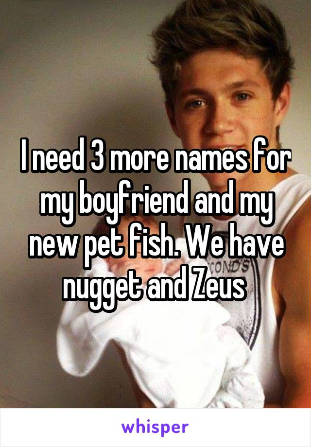 I need 3 more names for my boyfriend and my new pet fish. We have nugget and Zeus
