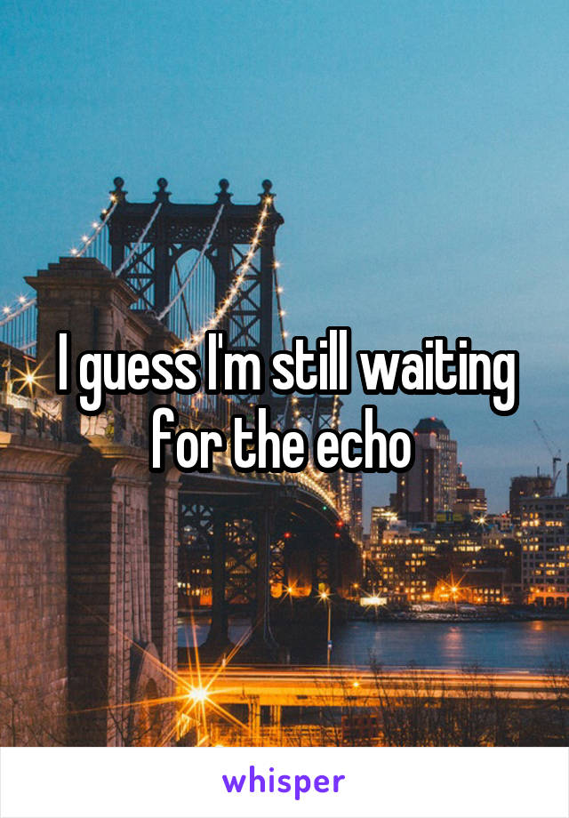 I guess I'm still waiting for the echo