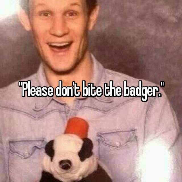 """Please don't bite the badger."""
