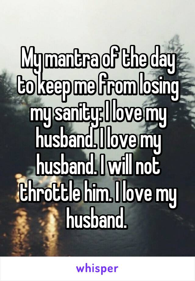 My mantra of the day to keep me from losing my sanity: I love my husband. I love my husband. I will not throttle him. I love my husband.