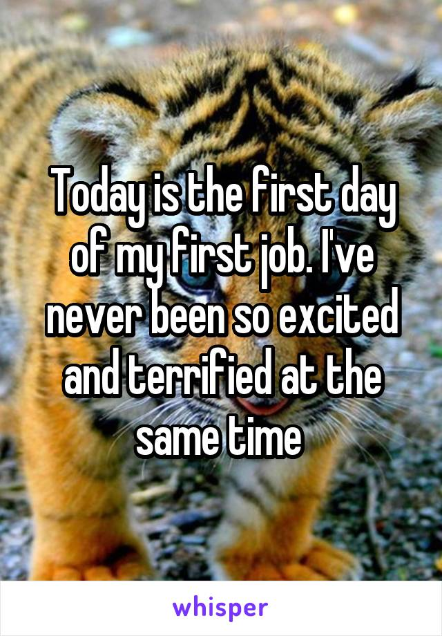 Today is the first day of my first job. I've never been so excited and terrified at the same time