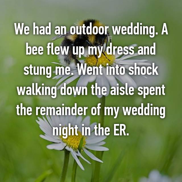 We had an outdoor wedding. A bee flew up my dress and stung me. Went into shock walking down the aisle spent the remainder of my wedding night in the ER.