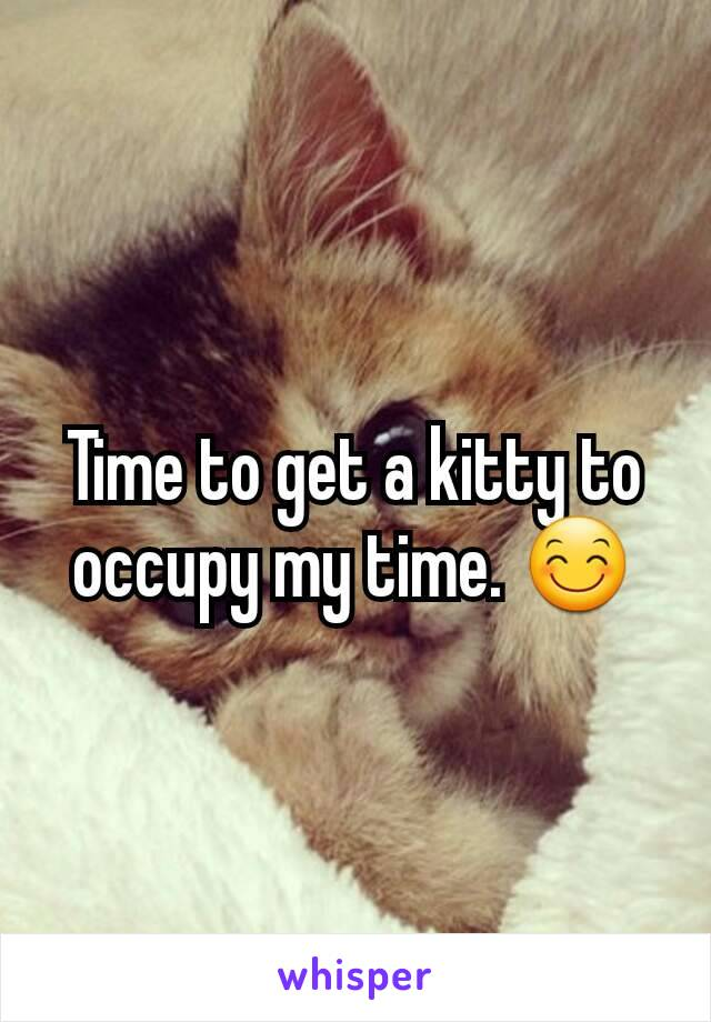 Time to get a kitty to occupy my time. 😊