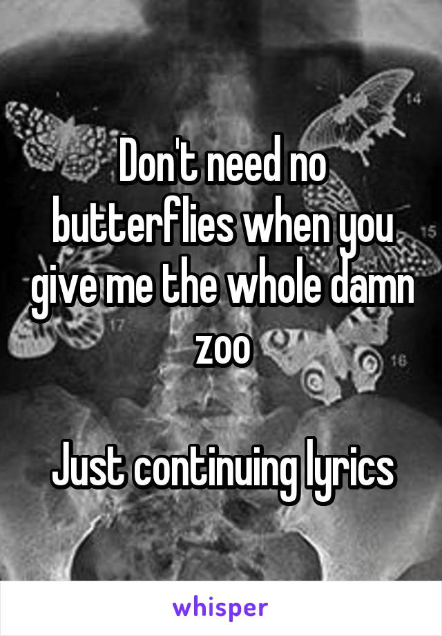 Don't need no butterflies when you give me the whole damn zoo  Just continuing lyrics