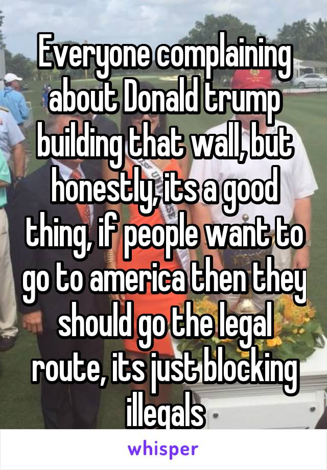 Everyone complaining about Donald trump building that wall, but honestly, its a good thing, if people want to go to america then they should go the legal route, its just blocking illegals