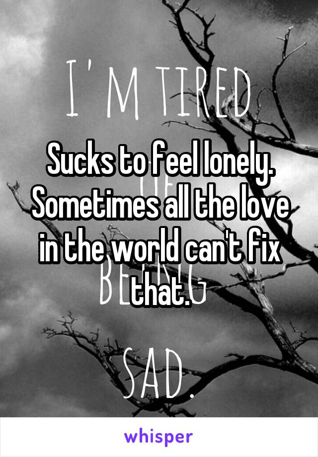 Sucks to feel lonely. Sometimes all the love in the world can't fix that.