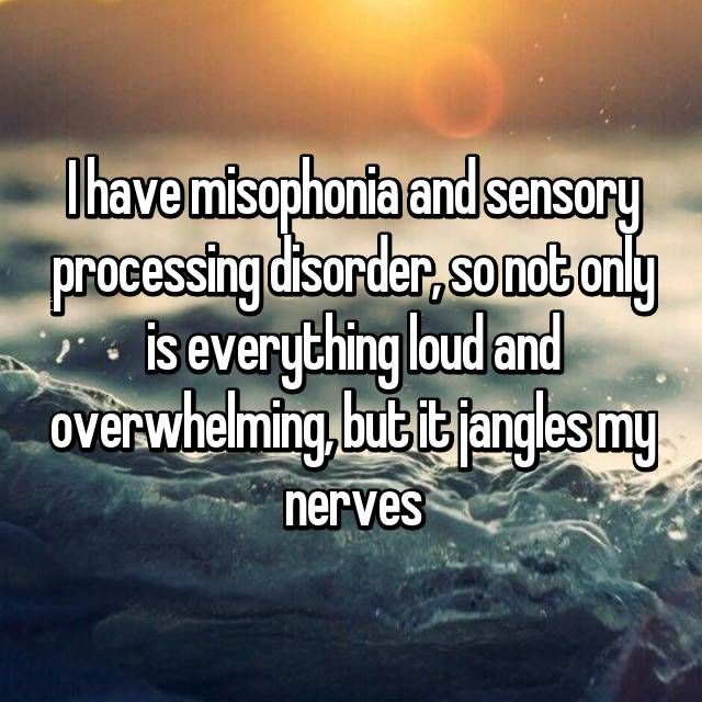 I have misophonia and sensory processing disorder, so not only is everything loud and overwhelming, but it jangles my nerves