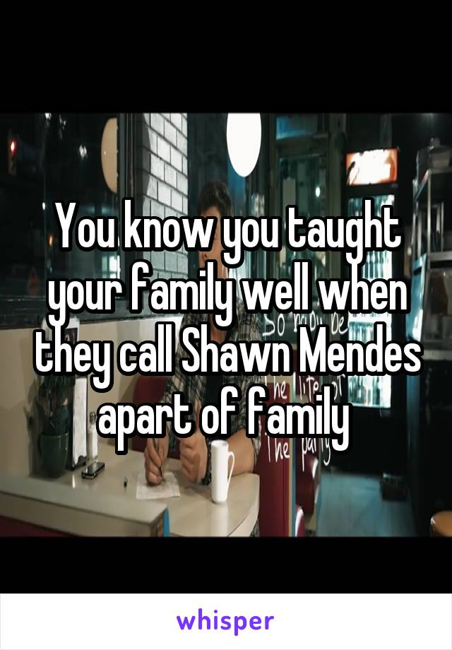 You know you taught your family well when they call Shawn Mendes apart of family