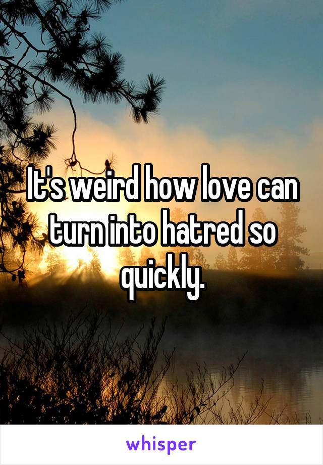 It's weird how love can turn into hatred so quickly.
