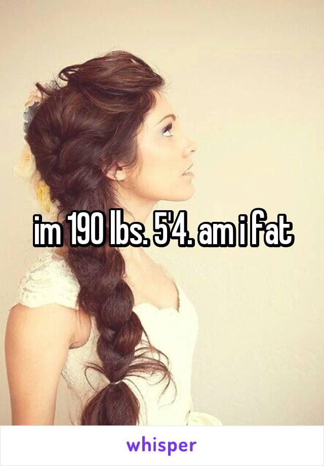 im 190 lbs. 5'4. am i fat