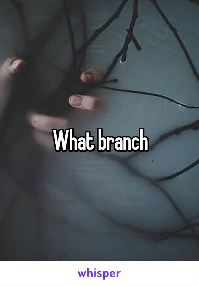 What branch