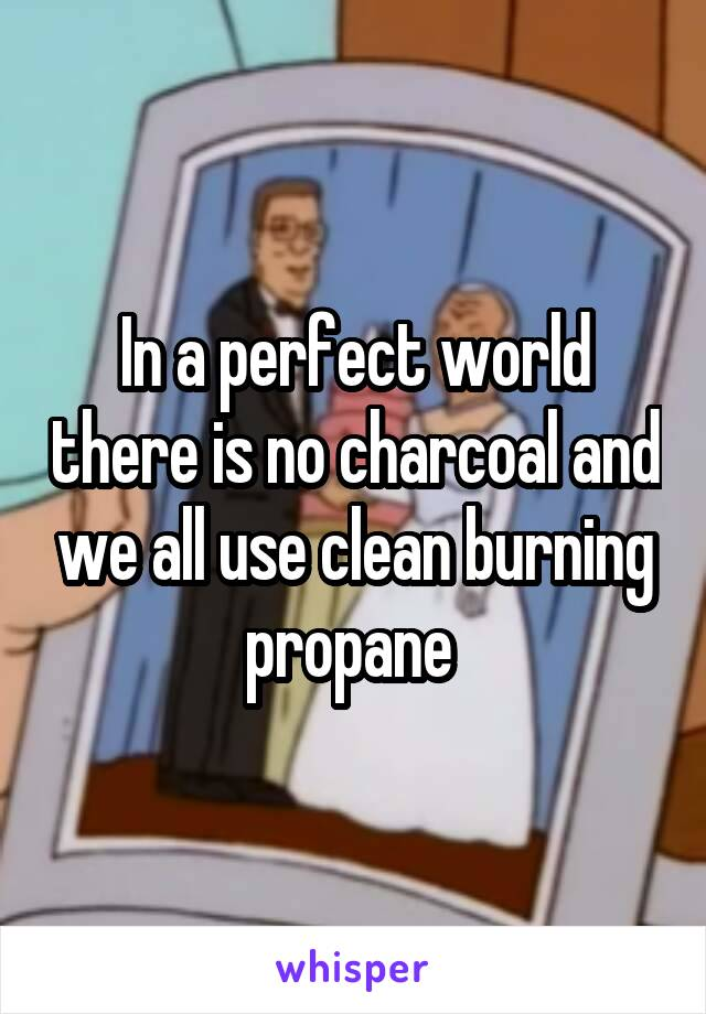 In a perfect world there is no charcoal and we all use clean burning propane
