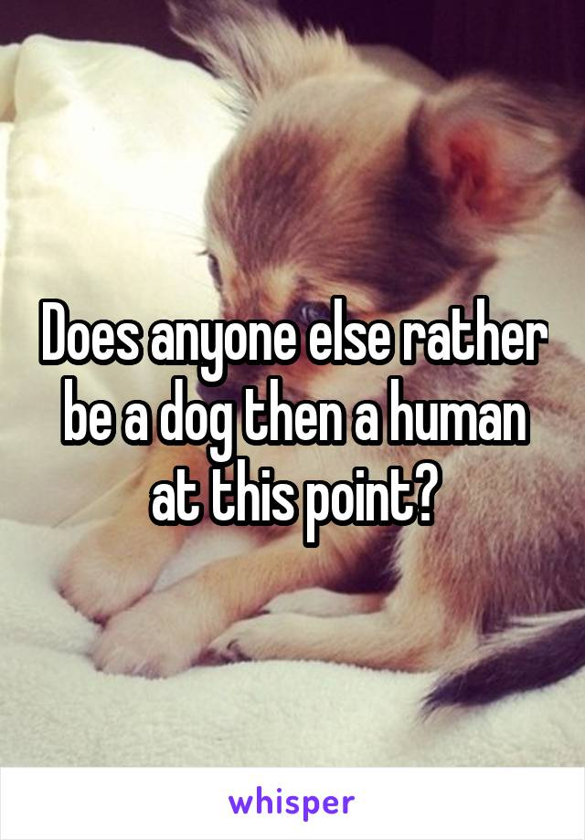 Does anyone else rather be a dog then a human at this point?