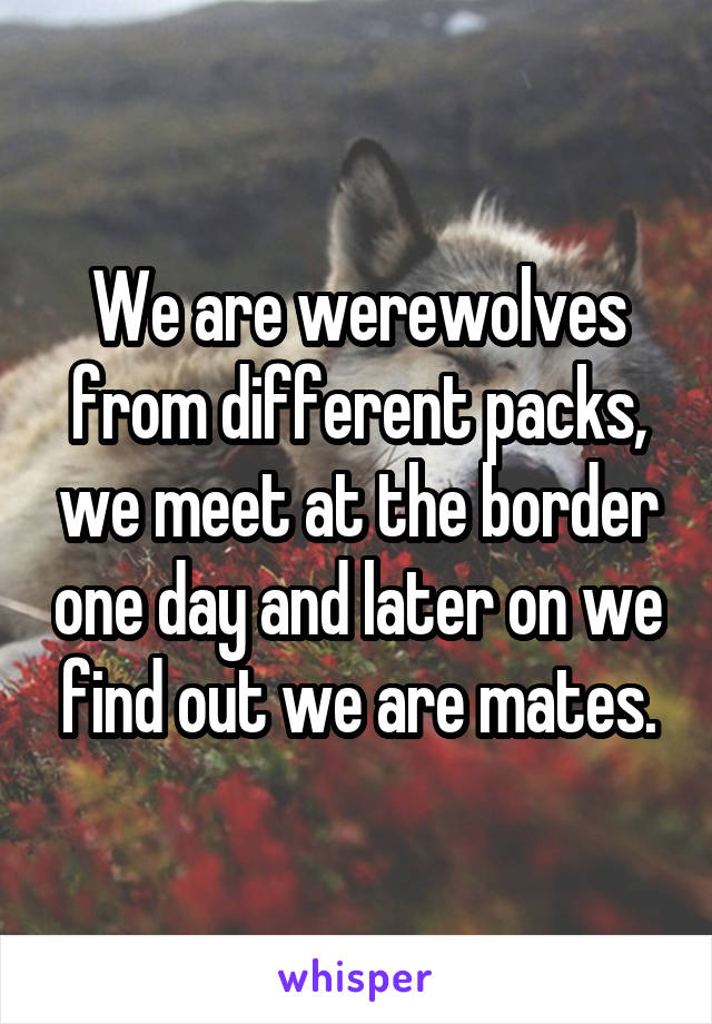 We are werewolves from different packs, we meet at the border one day and later on we find out we are mates.