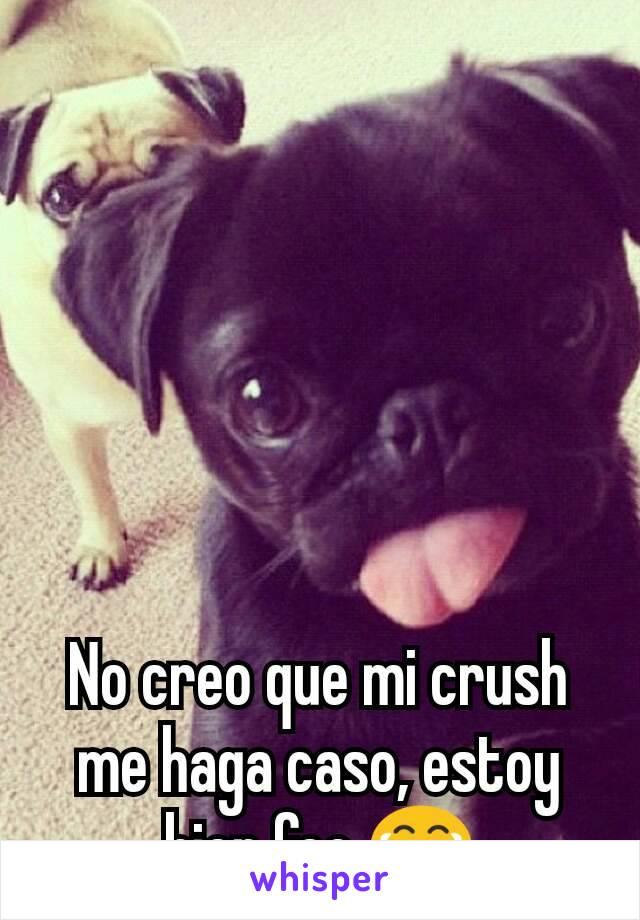 No creo que mi crush me haga caso, estoy bien feo 😂